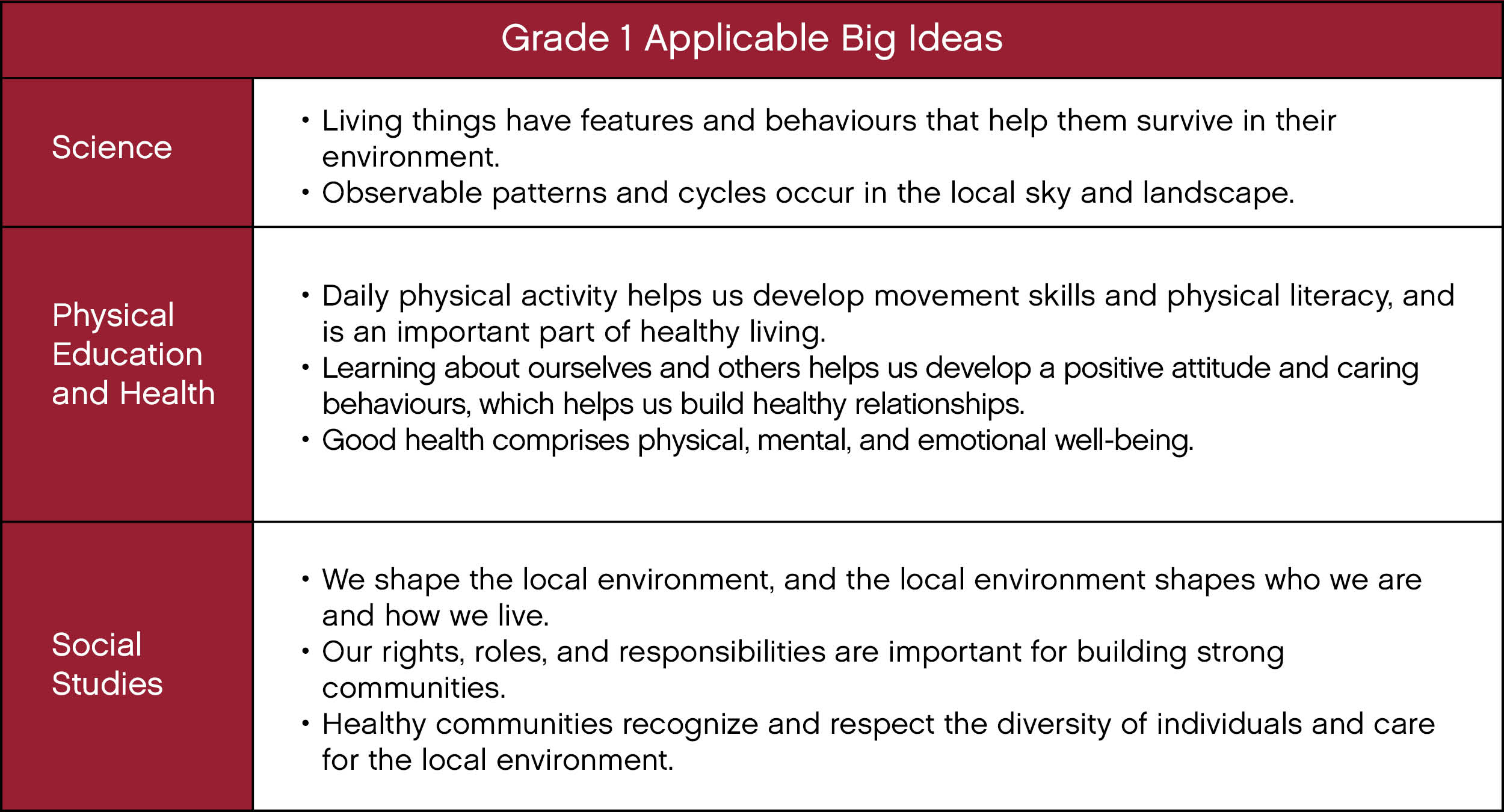 grade 1 big ideas